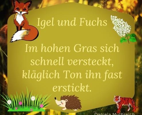 Igel und Fuchs